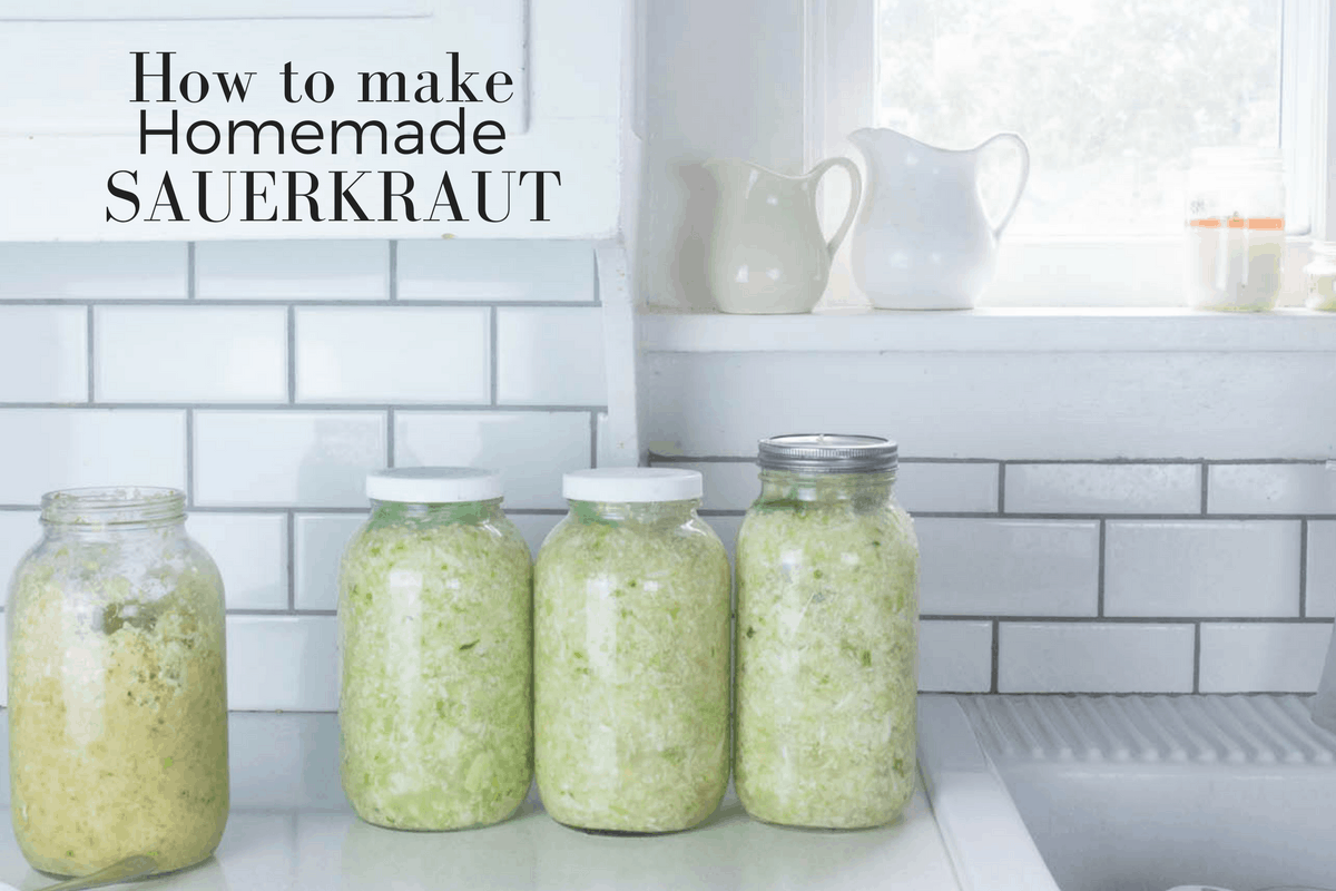 Four half gallon jars of homemade sauerkraut on a white countertop next to a farmhouse sink