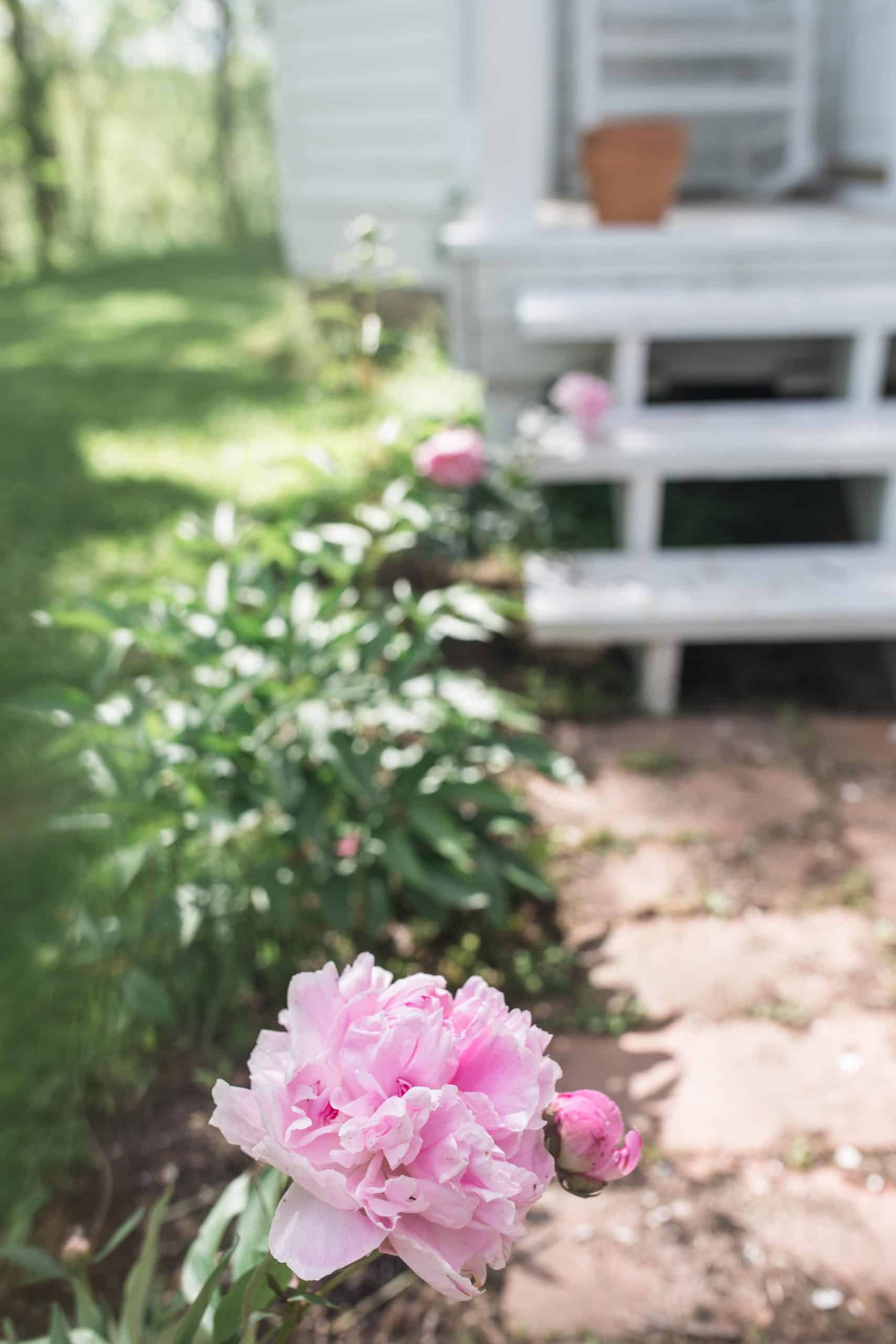 7 Tips For Growing A Cut Flower Garden And How To Make Beautiful Arrangements Farmhouse On Boone