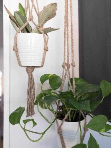 Macrame Plant Hanger DIY Video Tutorial