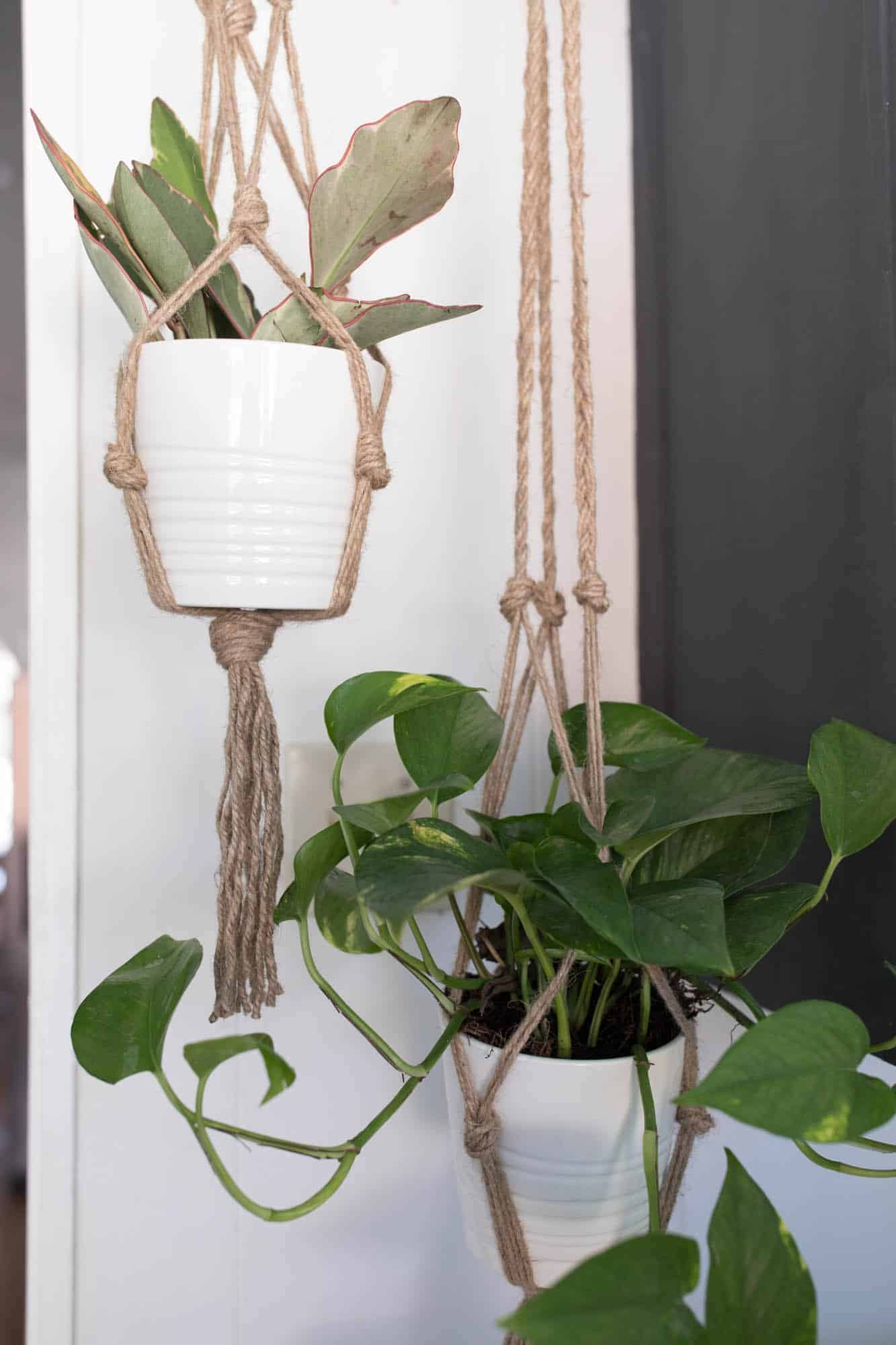 Simple Diy Macrame Necklace: Simple DIY Macrame Plant Hanger For Beginners