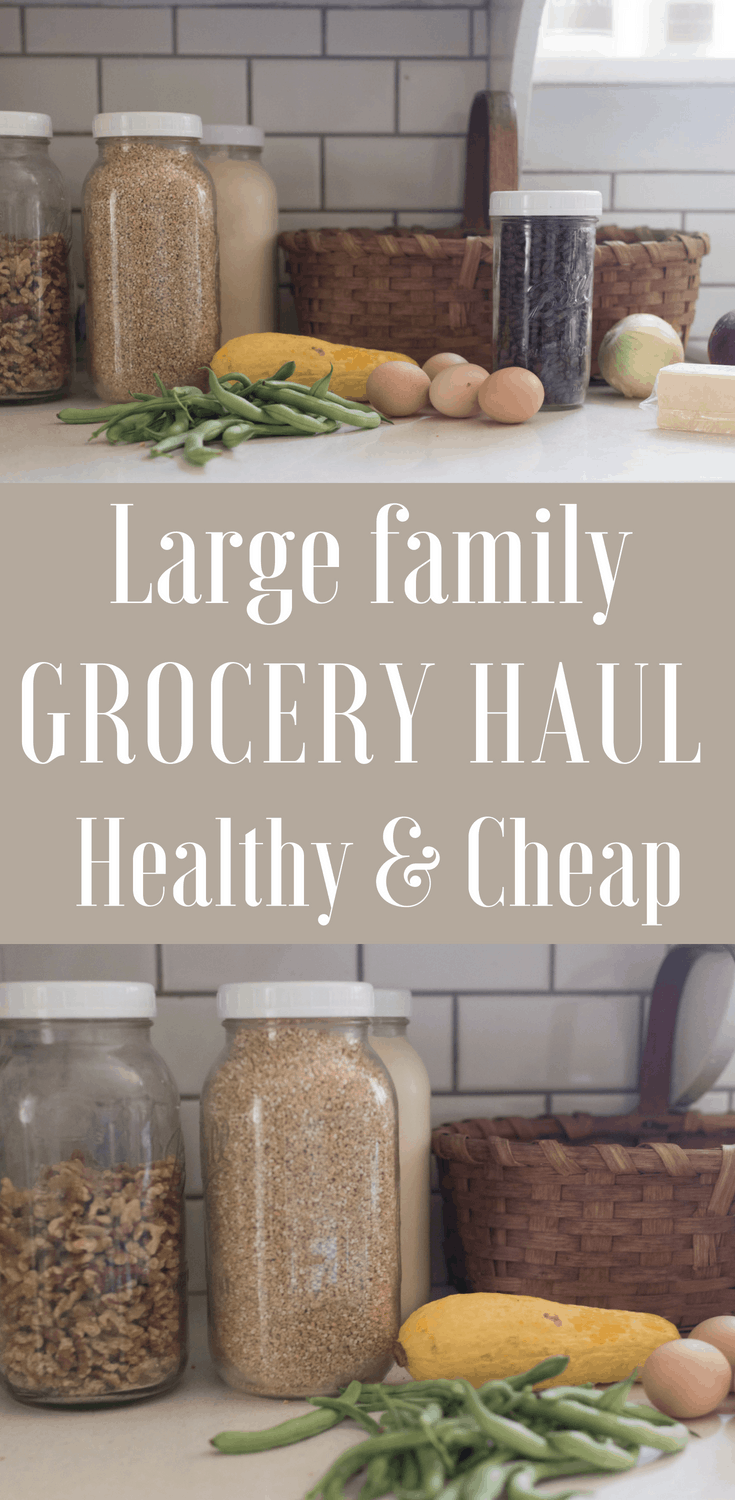 Grocery Haul Healthy | Large Family Grocery Shopping | ALDI