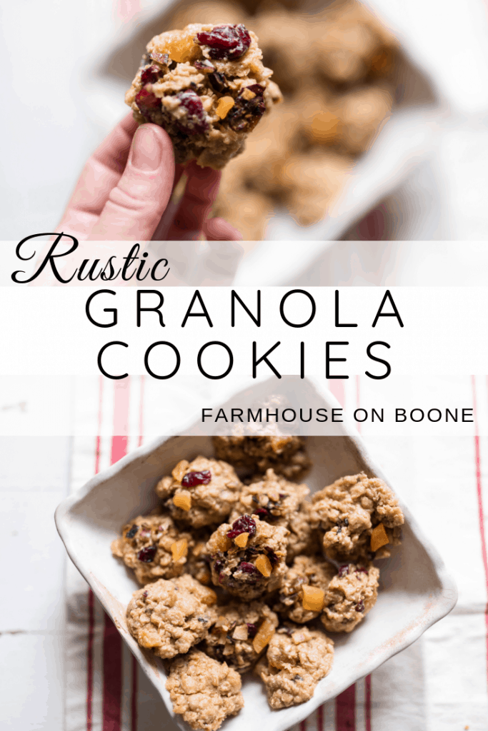 Rustic Granola Cookies Oatmeal cookies with apricots, toasted coconut, dried cranberries and golden raisins #oatmeal #cookie #christmascookies #christmasrecipes #healthycookies
