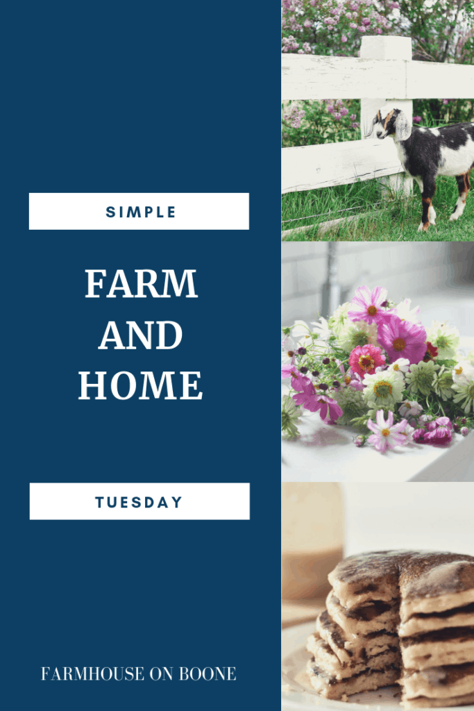Simple Farmhouse and Home Tuesday - Farmhouse on Boone