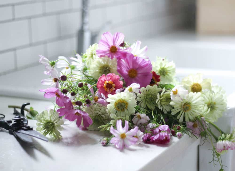 simple farm and home tuesday how to create a beautiful cut flower garden