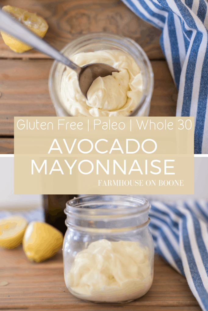 Avocado Mayo Recipe | MADE FROM SCRATCH| Easy Mayonnaise Recipe