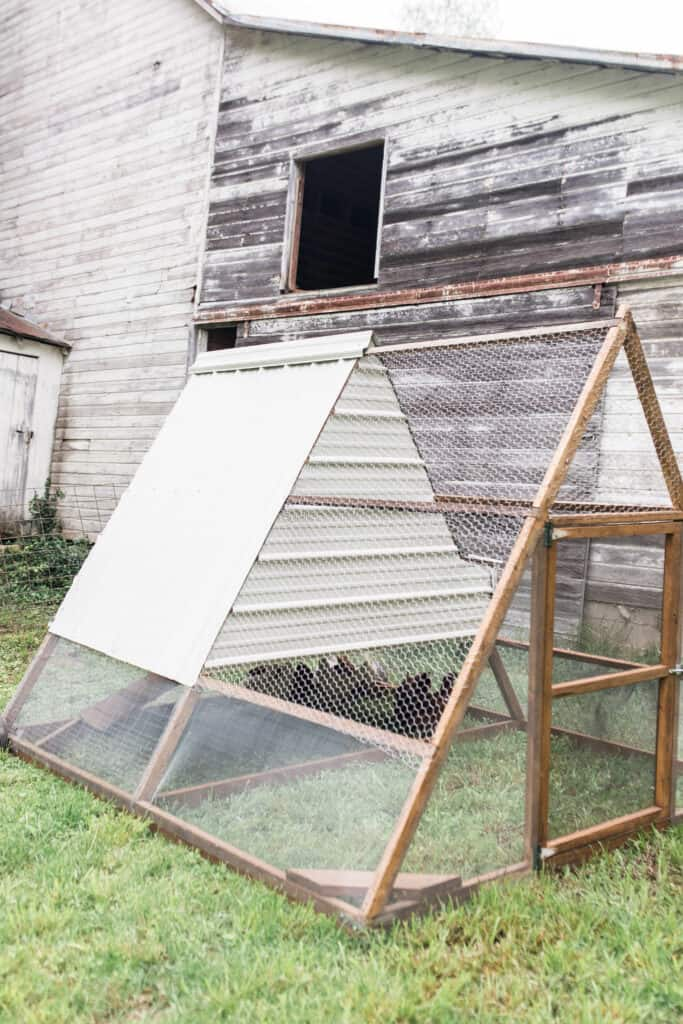 a frame chicken coop from green willow homestead plans