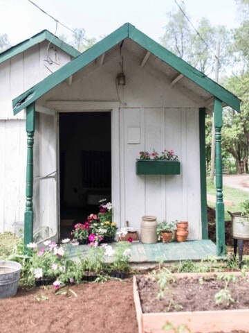 farmhouse cottage garden and raised beds