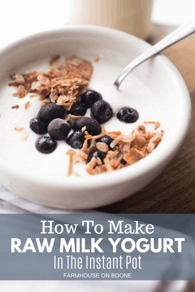 raw milk yogurt in a white bowl with blueberries and granola