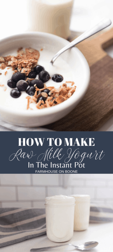 raw milk yogurt made in the instant pot topped with granola and bueberries