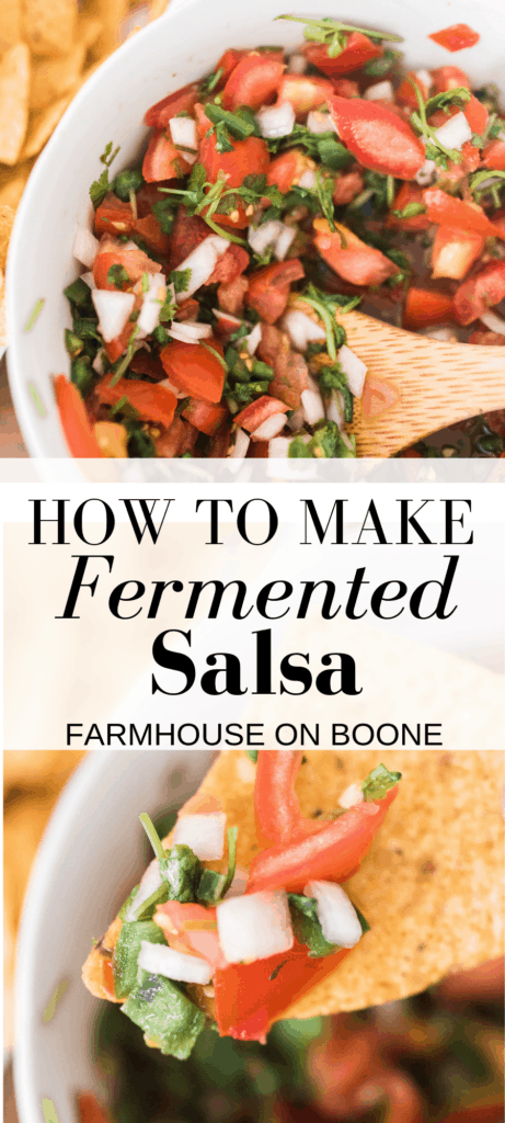 wo pictures of fermented salsa