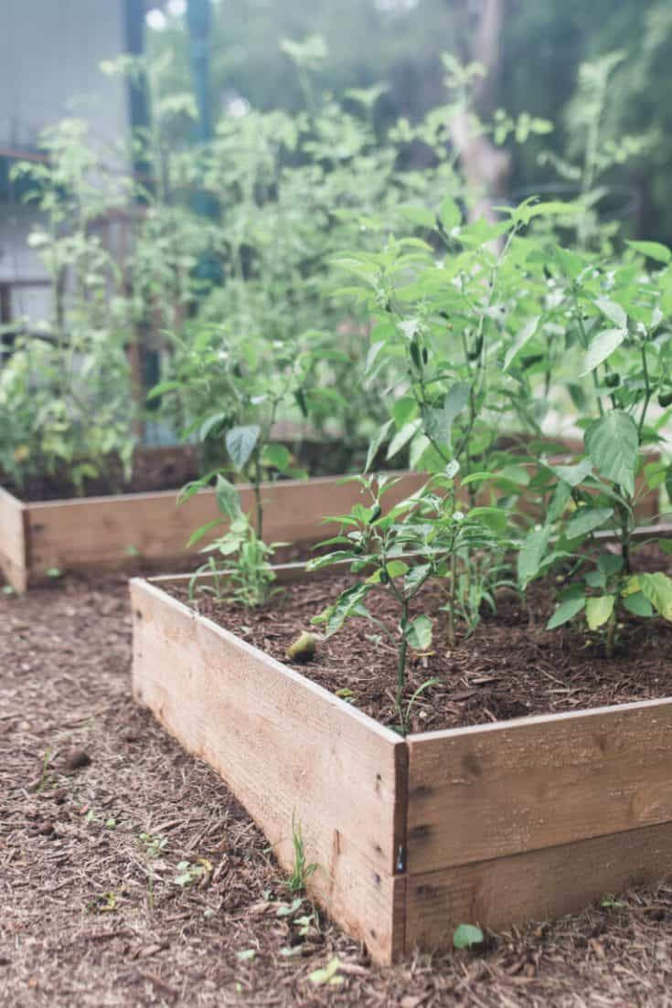 To Build A Raised Garden Bed For, How To Make An Inexpensive Raised Garden Bed