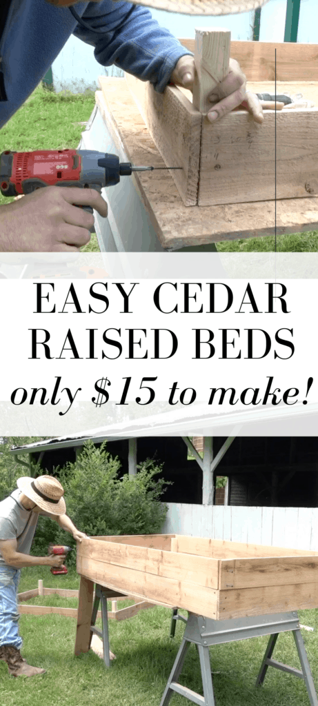 How to build cedar raised beds cheap and easy! with video tutorial