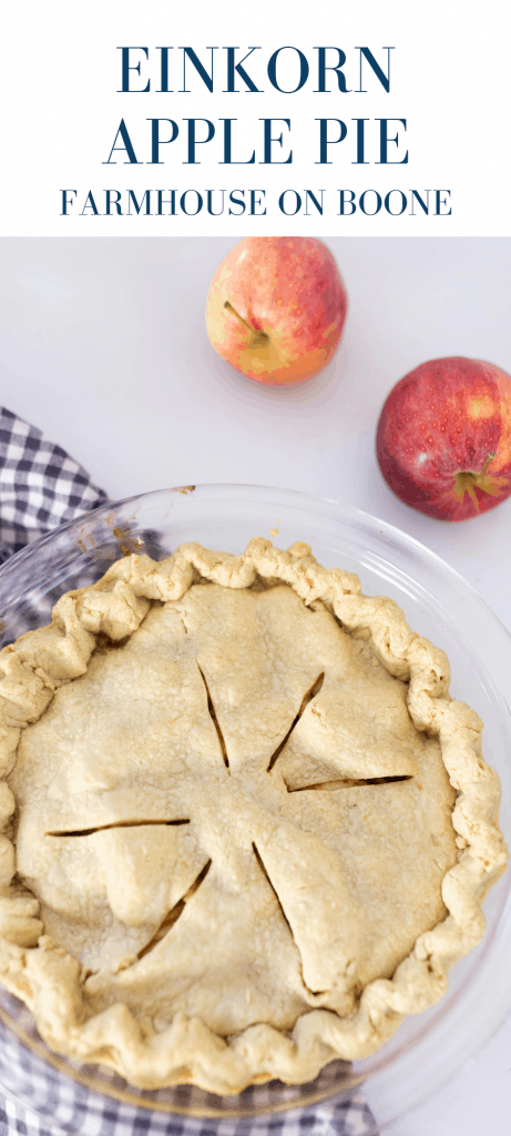 homemade apple pie with einkorn crust