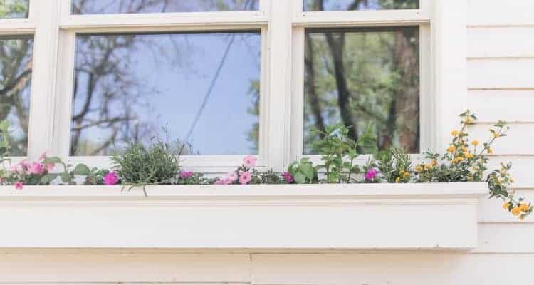a white window box hanging below a window on a white farmhouse with pink and yellow flowers in it.