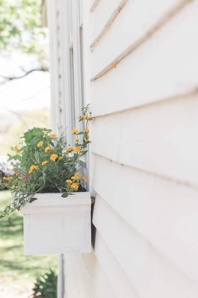 side view of DIY planter flower box with yellow flowers