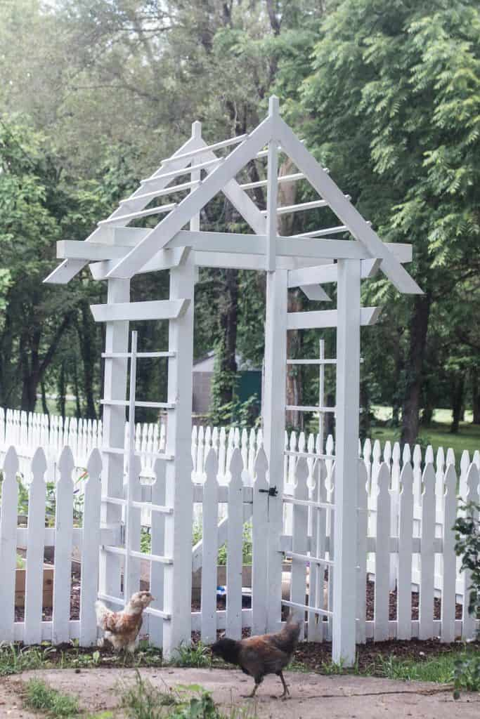 diy arbor plans at the entrance of a garden with a white picket fence