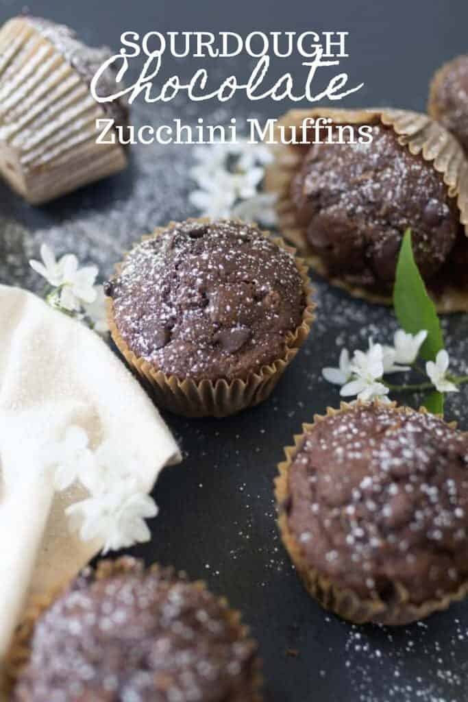 5 sourdough chocolate zucchini muffins on a black countertop with white flowers spread throughout