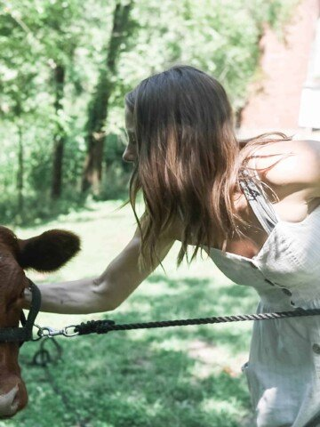 women wearing dress holding a rope in one hand and petting a calf with the other